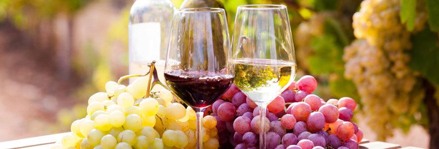 Spécialiste du vin primeur